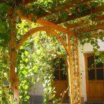 Garden Jahongir B&B Samarkand 11