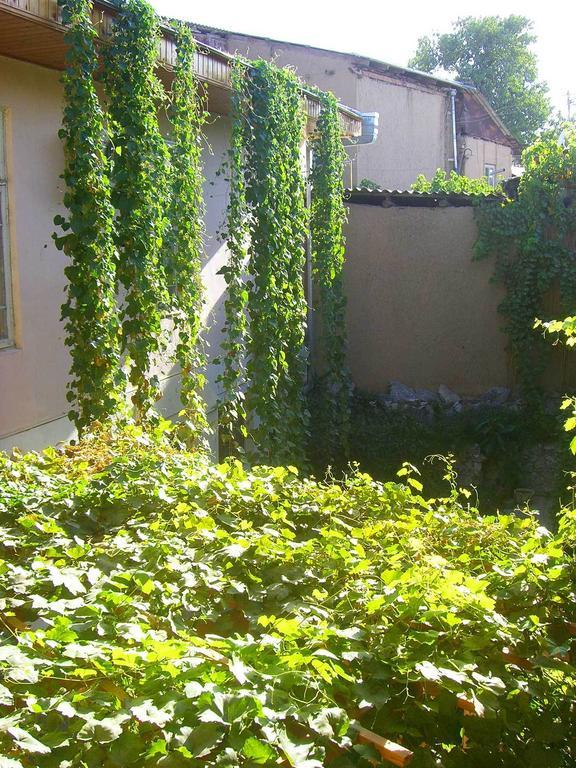 Garden Jahongir B&B Samarkand 15
