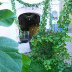 Garden Jahongir B&B Samarkand 3