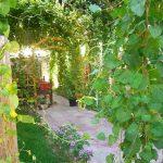 Garden Jahongir B&B Samarkand 6
