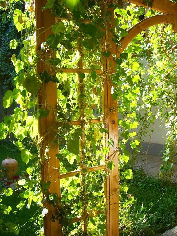 Garden Jahongir B&B Samarkand 7