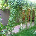 Garden Jahongir B&B Samarkand 8