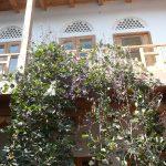 Helene Oasis Bukhara 2