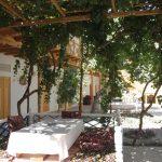 Yard Hovly Poyon Bukhara 4